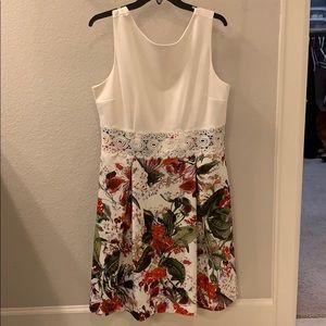 Gorgeous Dress Barn A line Dress
